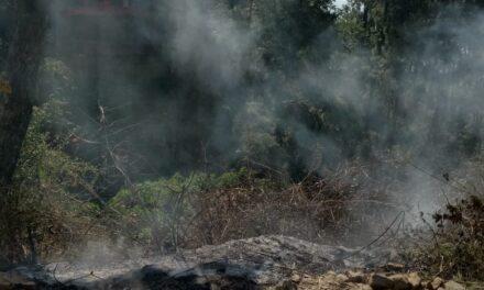 कर्नाटकखोला में लगी आग को सभासद एवं स्थानीय नागरिकों ने तत्परता से बुझाया