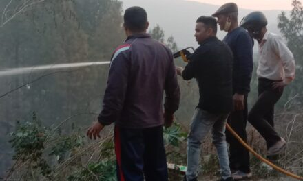 ग्राम सभा अथरमनी में लगी भीषण आग, बमशक्कत पा पाए काबू