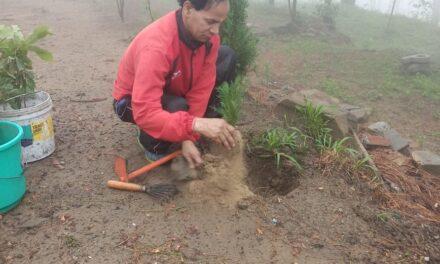वट सावित्री (व्रत) में कल्पना कृति जन महिला जागृति समिति ने किया वृक्षारोपण कार्यक्रम