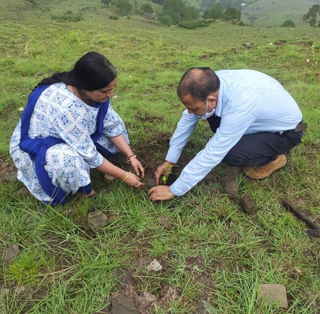 देवशयनि एकादशी पर राष्ट्रीय जनसेवा समिति अल्मोड़ा ने किया पौधारोपण